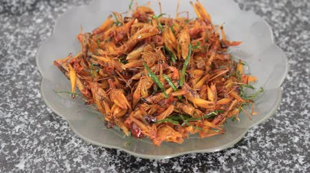 silkworm : Fried Grasshoppers Stock Footage