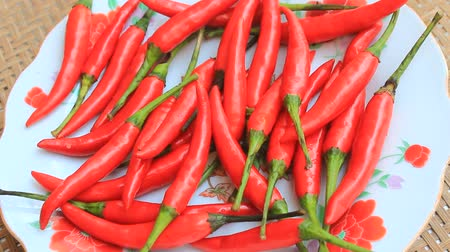 pimenta : chili peppers as a spice