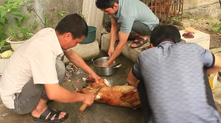 taboo : Haiduong, Vietnam, April, 29, 2015: People cook dog meat for food