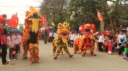 kultúra : Haiduong, Vietnam, March 31, 2015: group of lion dance on the streets  Stock mozgókép