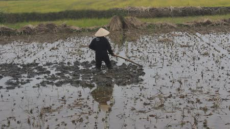 starość : Haiduong, Vietnam, December, 24, 2014: farmer working in the fields with hoes.