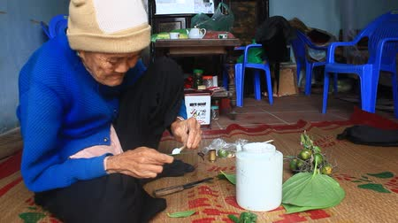 receptacle : Haiduong, Vietnam, December, 27, 2014: Woman Betel and Areca with Betel making.