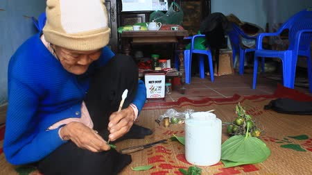 betel : Haiduong, Vietnam, December, 27, 2014: Woman Betel and Areca with Betel making. Betel chewing Customs of Vietnam is longstanding print Stock Footage