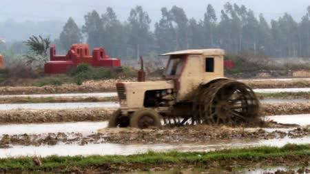 trator : Tractor on field