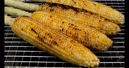cozinhado : Corns being grilled on a grill in summer season Vídeos