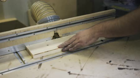 paneling : Working with wood using a special machine. Industrial tool. Real time. Stock Footage