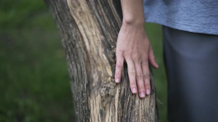 leisure time : Close up of a young woman s hand fondling a trunk of a tree with her hand. Concept of loving the nature and being a part of it. Tilt up real time close up shot