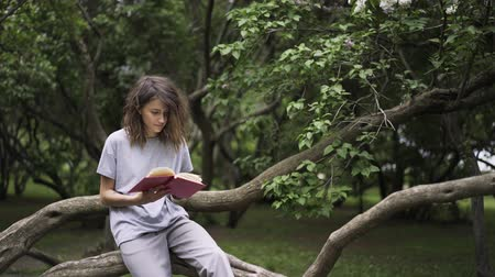 roman : Beautiful young woman reading a book in a park leaning on a large tree branch. Tilt down real time establishing shot Stok Video
