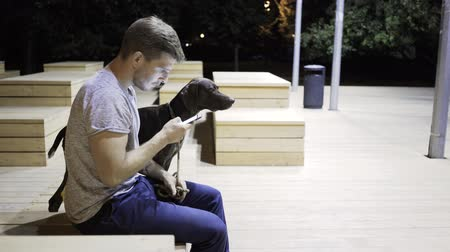 verdadeiro : Handsome young guy in a T shirt and jeans is sitting on a bench in a night park and web surfing. His big black dog is standing near him. Handheld real time medium shot
