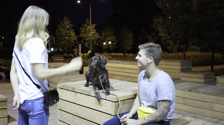 plavé vlasy : Young couple is training their dog in a park at night. Concept of obedience and a quality time with a family. Handheld real time medium shot Dostupné videozáznamy