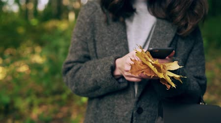 Unrecognizable young woman wearing a gray coat is holding maple leaves and net surfing from her smartphone in autumn park. Handheld slow motion close up shot