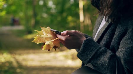 Unrecognizable young woman wearing a gray coat is holding maple leaves and texting in autumn park. Handheld slow motion close up shot