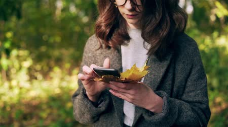 Unrecognizable young woman wearing a gray coat is holding maple leaves and net surfing from her smartphone in autumn park. Locked down slow motion close up shot Stock Footage