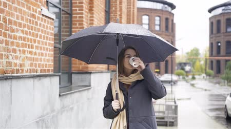újrahasznosított : Attractive young woman wearing a gray coat is standing under an umbrella and drinking coffee. Handheld slow motion medium shot Stock mozgókép