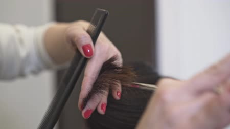 trim : Hands of an unrecognizable professional hairdresser with red nail polish cutting long dark hair of her client. Handheld real time close up shot Stock Footage