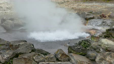 furnas : Hot Springs Geyser Closeup, Furnas, Azores, Portugal