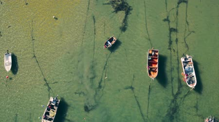 вниз : Aerial View Moored Fishing Boats in Harbor, Portugal Стоковые видеозаписи