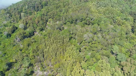 Aerial View of the Mountain Forest with Fog, Sintra Portugal Dostupné videozáznamy