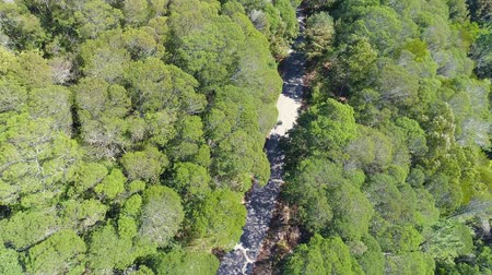 Aerial View of the Mountain Forest with Road, Sintra Portugal Dostupné videozáznamy
