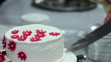 wedding cake : cutting the wedding cake