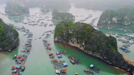 ba : a floating fishermans village in ha long bay, northern vietnam. top view, aerial view, quadcopter, movement, motion, 4K move flying drone Stock Footage