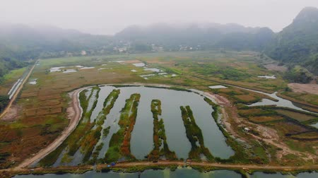 ba : Top view of the wetlands of the island of Cat BA near the sea on land. Morning gloomy landscape of the countryside of Vietnam Stock Footage