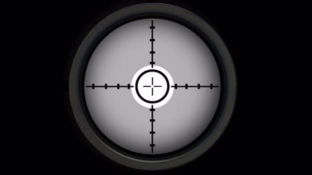 crosshair : Sniper Scope. Gun Sight. Alpha Channel Included. Looped. Easy to use.