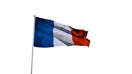 France Flag of Country. Alpha Channel Included. easy to use. Стоковые видеозаписи