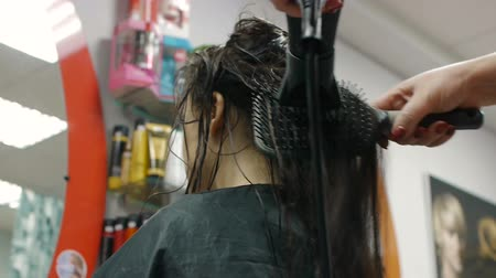сушка : Woman with long hair at the beauty salon getting a blower