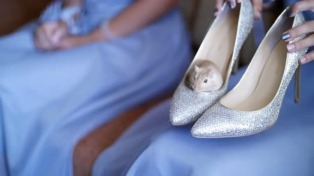 high heeled sandals : Decorative mouse in shoe Bride.
