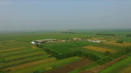 schleswig : Farm in the village - aerial photography of agricultural fields.