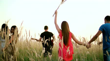 çiftlik : beautiful girls and boys walking in the field - spikes in the sunset.