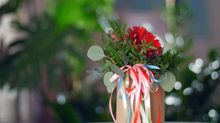 roomy : Flower gift in the rays of light Stock Footage