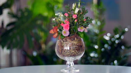 single headed : floral composition against the backdrop of greenery Stock Footage