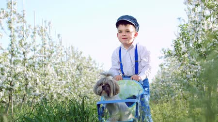 necessity : Cheerful, cute rural boy with a small dog, a small farmer