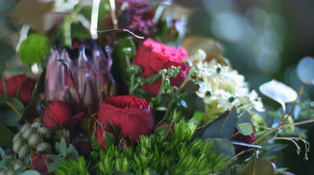 grat : close-up, Flower bouquet in the rays of light, rotation, consists of Protea, Brunia green, Barbatus, Rose pion-shaped bordeaux, pistachio tree, Ornithogalum, eucalyptus, Santini Stock Footage
