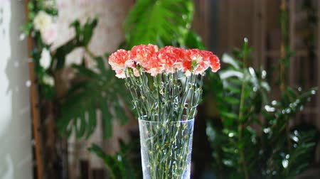 roomy : Flower bouquet in the rays of light, rotation, the floral composition consists of Bright orange turkish Carnation. In the background a lot of greenery Stock Footage