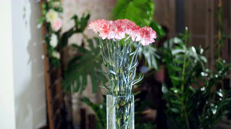 roomy : Flower bouquet in the rays of light, rotation, the floral composition consists of light pink turkish Carnation In the background a lot of greenery