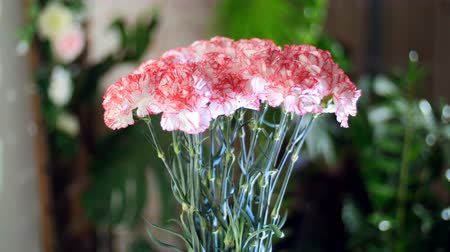 yana : Flower bouquet in the rays of light, rotation, the floral composition consists of light pink turkish Carnation In the background a lot of greenery