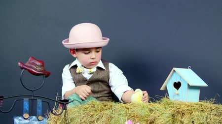 orphans : Village, stylishly dressed cute little boy playing with ducklings and chickens, studio video with thematic decor