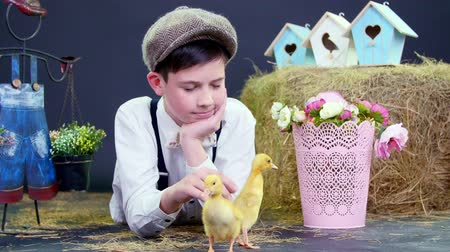 orphans : Village, stylishly dressed cute boy playing with ducklings and chickens, studio video with thematic decor. In the background a haystack, colored bird houses, and flowers.