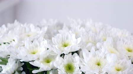 grat : close-up, view from above, lowers, bouquet, rotation, floral composition consists of white Chrysanthemum Chamomile