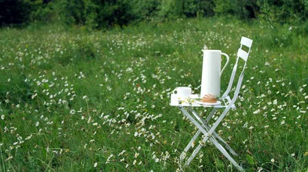 calcário : Among the chamomile lawn stands a white chair. On it there is a composition of a white jug, a white cup with tea, a bread and a bouquet of chamomiles.