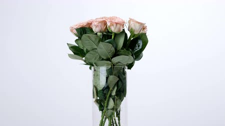 sarıcı : Flowers, bouquet, rotation on white background, floral composition consists of Roses cappuccino. Divine beauty