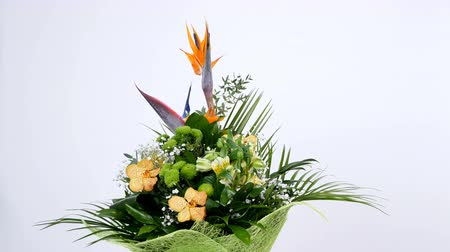 alstroemeria : Flower bouquet on white background, rotation, the floral composition consists of Strelitzia, Chrysanthemum, Phalaenopsis orchid.