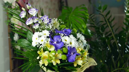 alstroemeria : Flower bouquet in the rays of light, rotation, the floral composition consists of Alstroemeria, Chrysanthemum bacardi, Orchid vanda, Santini , gypsophila, Eustoma, Stock Footage