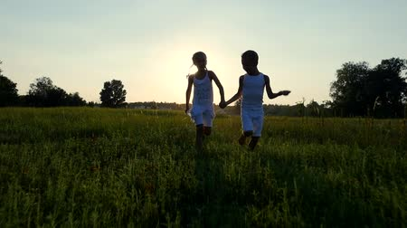blue braid : Silhouettes, figures of children, boy and girl are running, having fun, against the background of the sun, at sunset in summer. Happy family. Slow motion Stock Footage