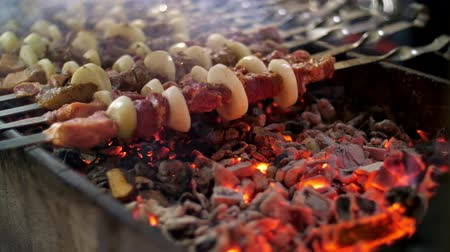 kabab : a shish kebab from pork, on skewers, fry on red hot coals