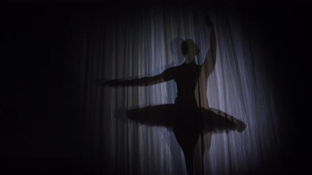 позы : on the stage of the old theater hall there is a ballerina dancing shadow in ballet tutu, in rays of spotlight,. she is dancing elegantly certain ballet motion, Swan Lake