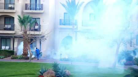 komary : SHARM EL SHEIKH, EGYPT - APRIL 5, 2018 : Hotel Jaz Belvedere. Man work fogging to eliminate mosquitos with a special smoke machine. clouds of white smoke rise Wideo